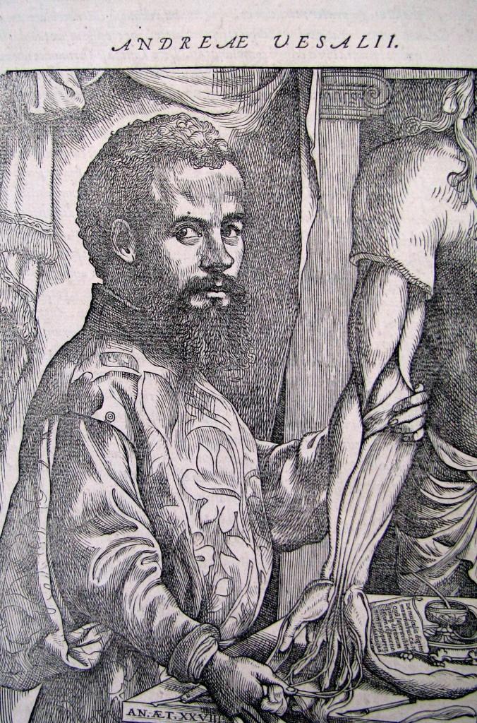 Frontispice. Andreae Vesalii,.De corporis humani fabrica libri septem. Bâle: Jean Oporin 1555. Cote 815.