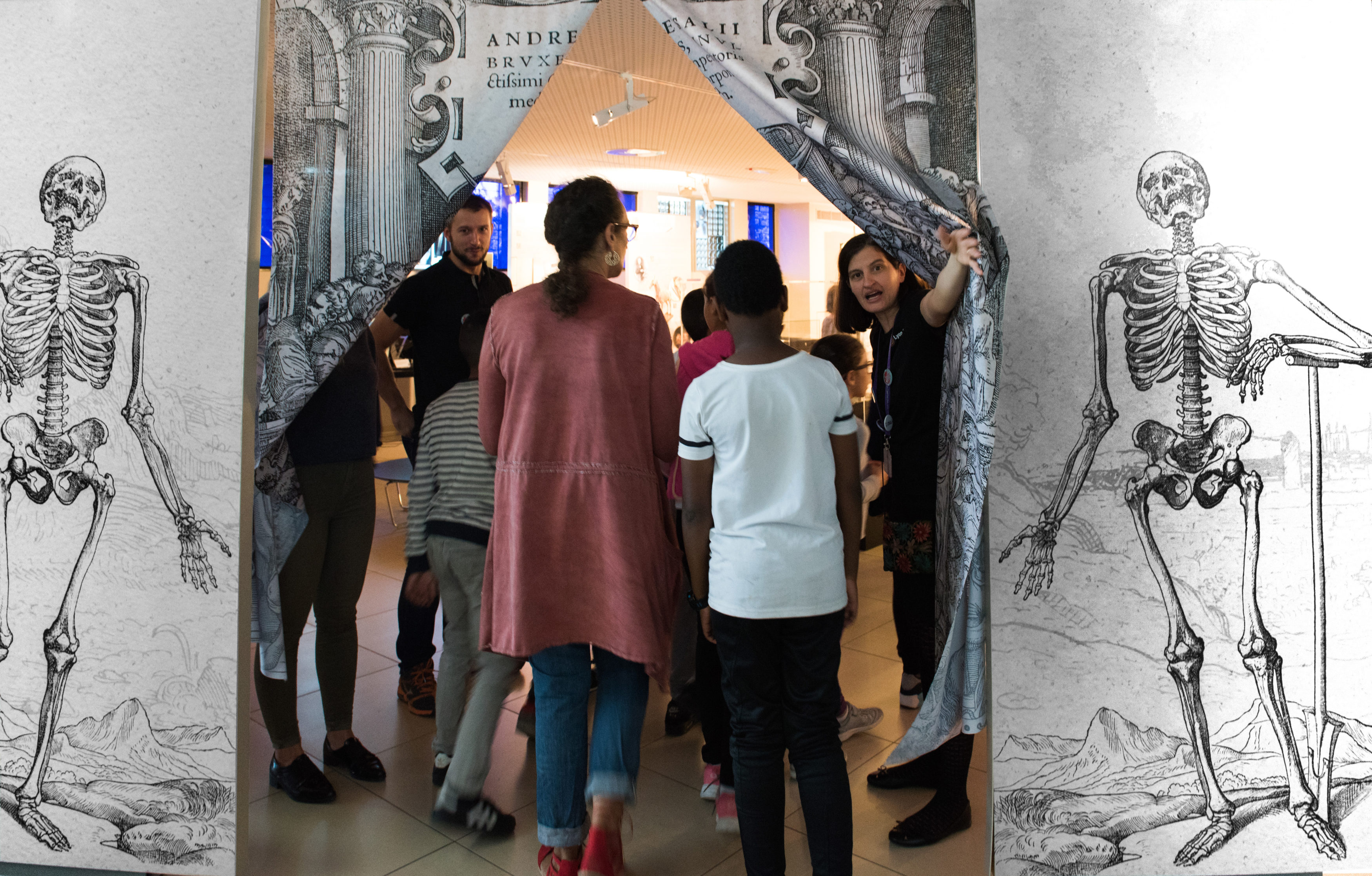 2017 Exposition L'anatomie de Vésale (2)