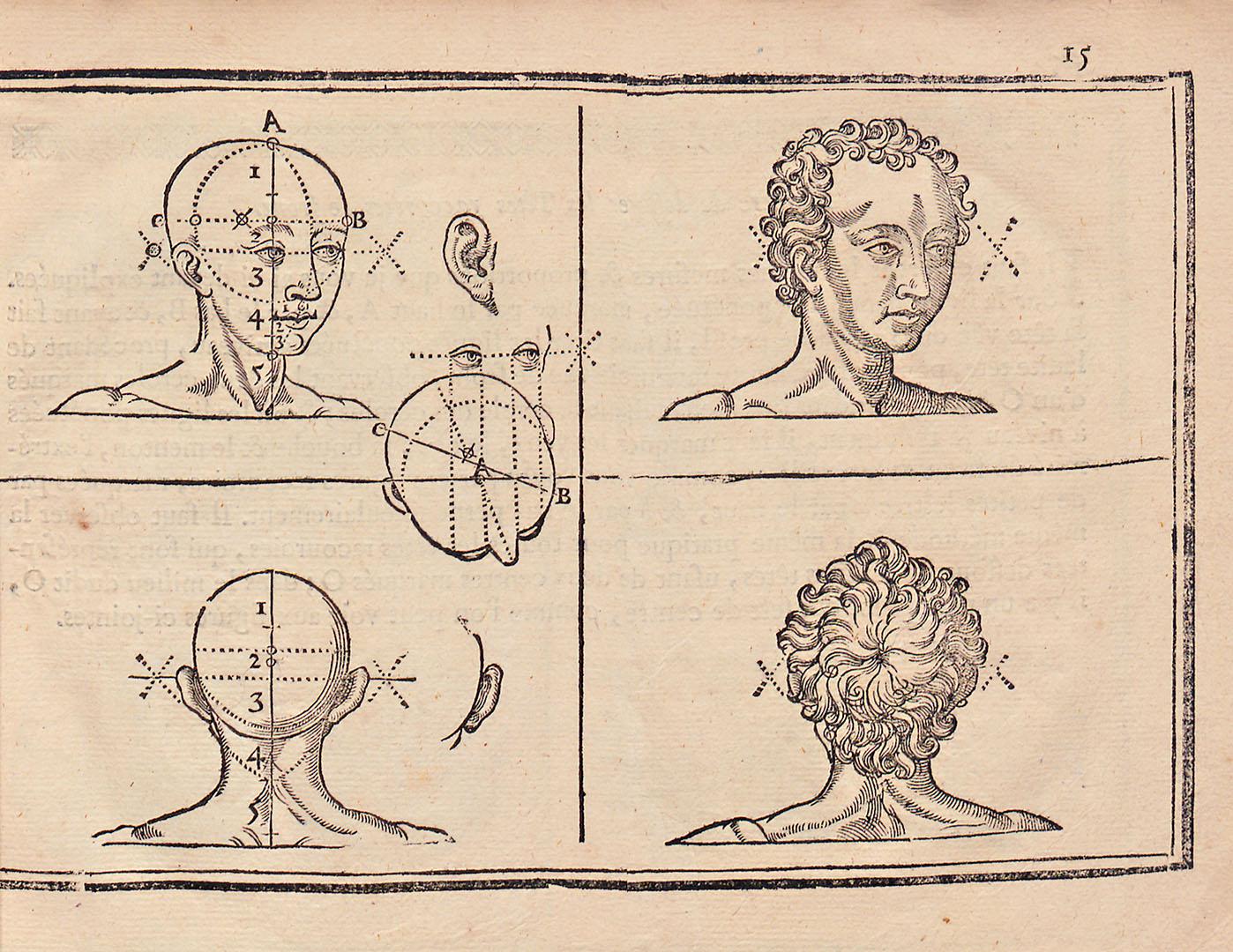 """L'art de dessiner par Jean Cousin, """"unité de mesure : le nez"""""""