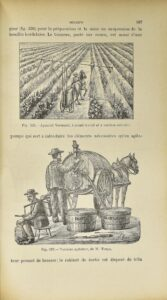 Foex, Gustave. Cours complet de viticulture.1895